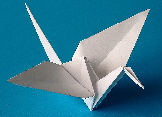 Origami & paper folding